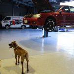 morphett vale repairs car
